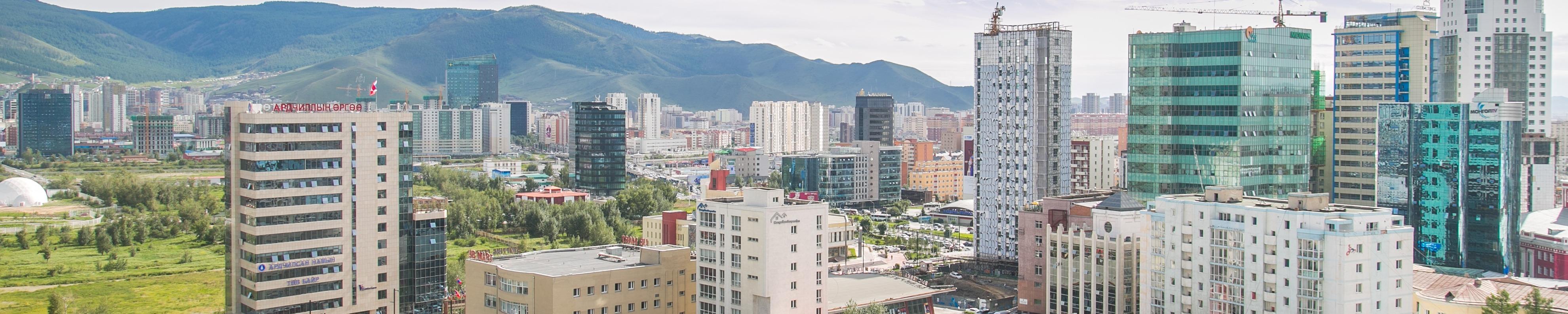 Mongolian Properties Copyright